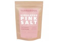 HF-RG02202 Terrasoul - Salt, Himalayan Pink, Fine 喜馬拉雅山岩鹽-幼粒 (1 lb)